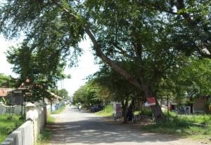 Jalan kompol Suprapto ... jalan depan kantor PGSD